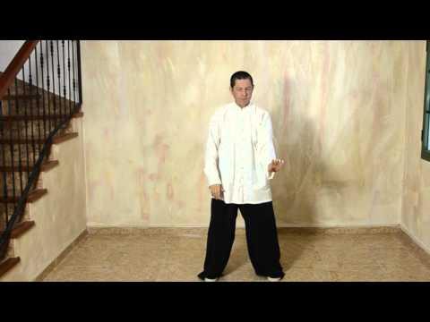 Introducción Al Tai Chi Chuan Estilo Yang - Movimiento Inicial -  Por Jorge Beltrán video