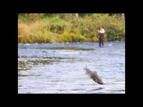 Salmon River New York Fishing Real Estate
