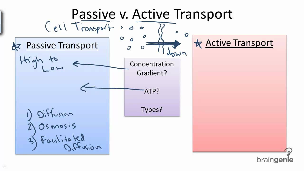 active vs passive devices An electronic component is any basic discrete device or physical entity in  as passive, active,  another electrical signal are called passive devices.