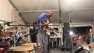 """OLIVER MTUKUDZI-"""" GONDO"""" """"NERIA"""" MARLOW UK 2012"""