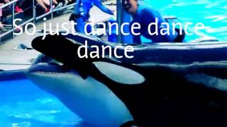Can't Stop The Feeling- --Orca Version