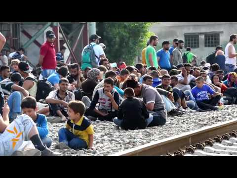 Migrants And Refugees Struggle At Balkan Borders