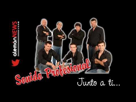 Sonido Profesional - Junto A Ti [Febrero 2013]