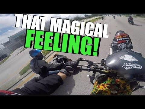 Best Reaction Ever! - First Stunt Show FAIL!