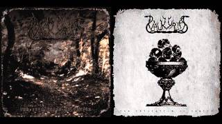 Watch Valkyrja Purification And Demise video