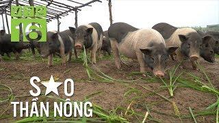 Thanh niên tuổi 20 sở hữu trang trại lợn sạch đẹp như mơ   VTC16