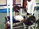 337 lbs bench press