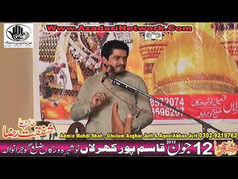 Zakir Syed Ali Naqi  Shah 12 June 2018 Qasimpur Kharalan