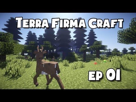 TerraFirmaCraft - #1 - Surviving The First Night