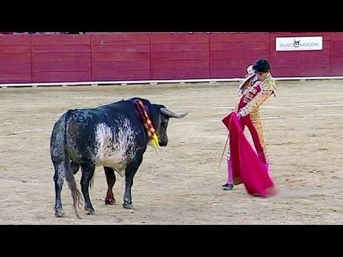 Espagne : mort d'un torero dans l'arène