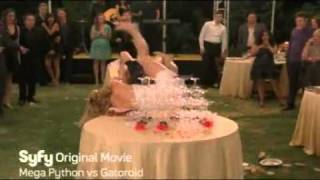 Tiffany and Debbie Gibson Cat Fight.flv