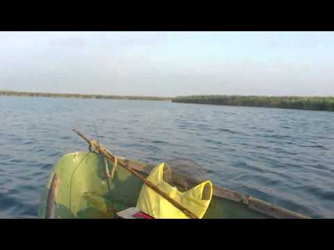 рыбалка в темрюке форум