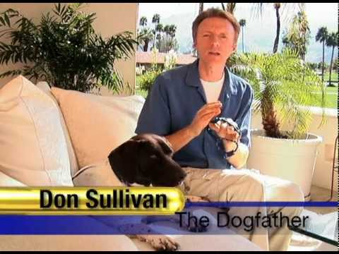 Perfect dog training don sullivan