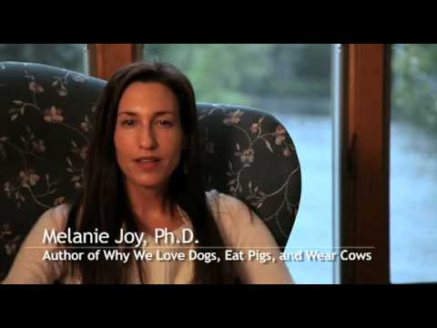 Why We Love Dogs, Eat Pigs, and Wear Cows - An Introduction to Carnism