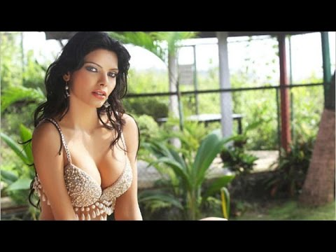 Sherlyn Chopra's Hot Kamasutra 3d Poses video