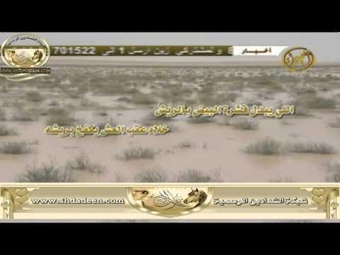 شيلة القلوب الغشيشة لمحمد الجهمان أداء علي الجهمان