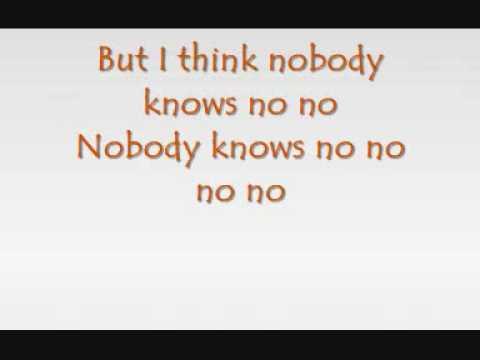 Pink - Nobody Knows (with lyrics)