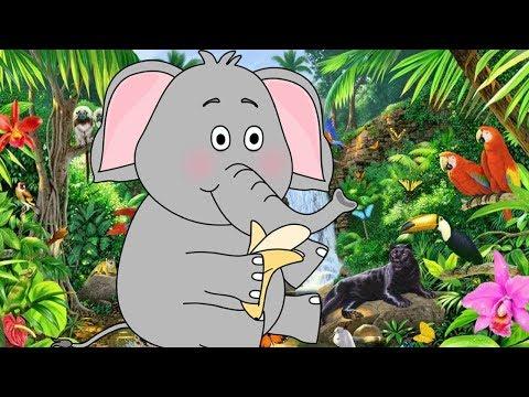 Песни из кино и мультфильмов - Розовый слон