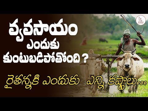 వ్యవసాయం ఎందుకు కుటుబడిపోతుంది | Amarnath Pakalapati about  Agriculture |  Eagle Media Works