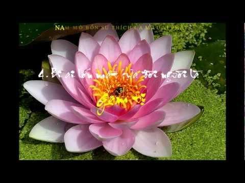 14 Điều Phật Dạy (Có Phụ Đề)