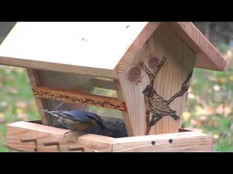 mangeoire r servo oiseaux youtube. Black Bedroom Furniture Sets. Home Design Ideas