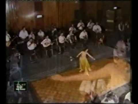 Dina دينا egyptian dancer (gold costume) رقص شرقي مصري