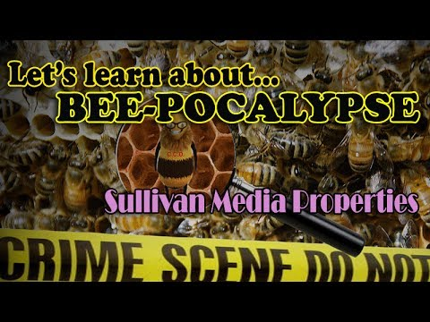 Bee-Pocalypse || a Sullivan Media Properties clip-vestigation