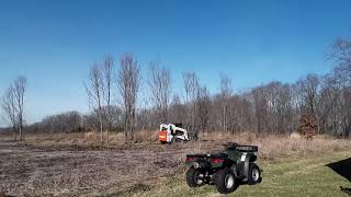 Black Locust Removal at Stony Hills Nature Preserve