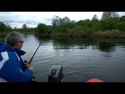 рыбалка получи и распишись реке луга на районе толмачева