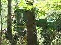 Ashmore Logging Contractors, Lincohnton, Georgia