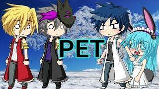 Pet // ep 1 //