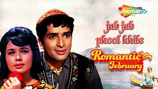 Jab Jab Phool Khile Hindi Movie