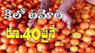 Tomato Price Crosses 40 Rupees in Telugu States | ఠారెత్తిస్తున్న టమాటా