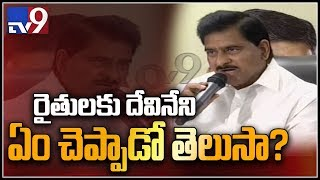 TDP Devineni Uma on drought in Andhra Pradesh     Vijayawada