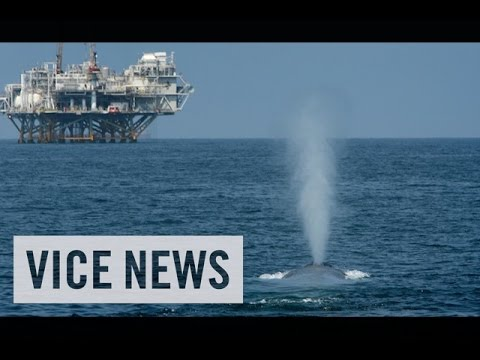 VICE News Daily: Beyond The Headlines - July, 25 2014