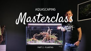 Aquascaping Masterclass | Step by Step Aquascape Tutorial - Part 2