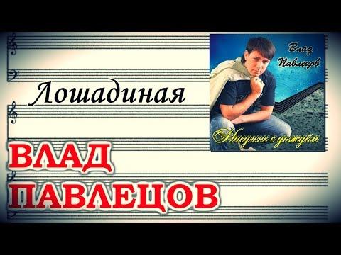 Влад ПАВЛЕЦОВ - Лошадиная (Official Audio)