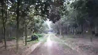 Track Kebun Karet Karanganyar