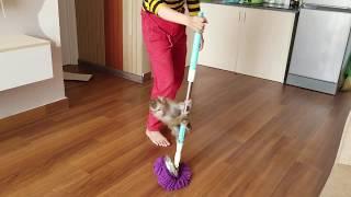 Monkey Baby Nui | Monkey Nui and mom wipe the house