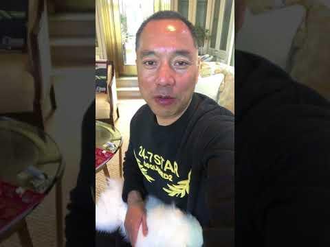 郭文贵11月26日报平安视频