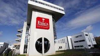 Bachelors ESSCA : quelle différence avec le programme Grande Ecole ?