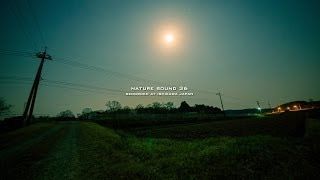 Nature Sound 36 - ONE HOUR SOUND in SPRING JAPAN / THE MOST RELAXING SOUNDS -