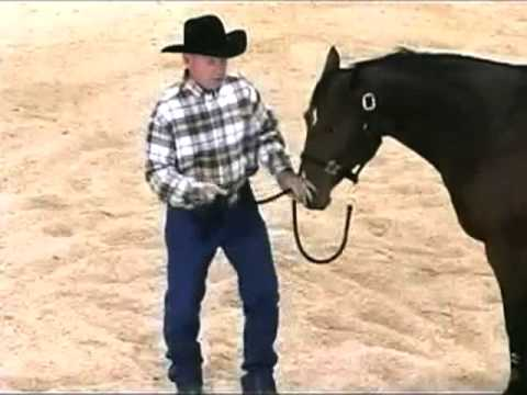 Horse Training with John Lyons - Pull Back Part 1