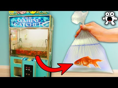 Top 20 Vending Machines You'll Wish We Had More Of In The World