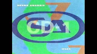 Watch Skunk Anansie Tour Hymn video