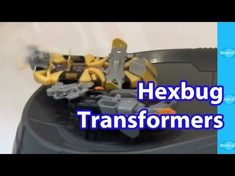 Hexbug Transformers Toy Fair Preview video