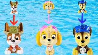 Learn Colors with Paw Patrol Pool Bath Toys Make the Pups Grow BIG | Fizzy Fun Toys