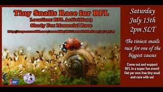 Giant snail race 478 17 July 15th RFL Shady Fox Memorial Tiny Snail Race