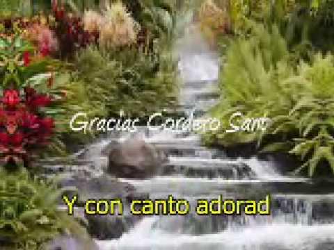 Adorad al Cordero Santo - Alas de Aguila