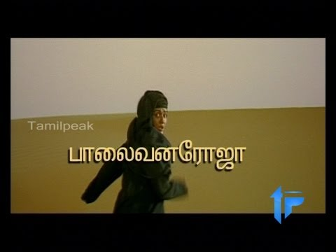 Palaivana Roja 2013 Latest Tamil Film Part 1 12 video